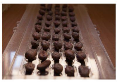 Prueba de corte de granos de cacao
