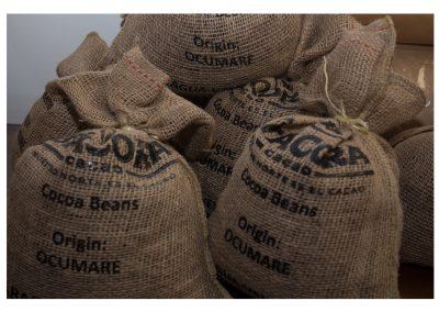 Recepción de cacao seco